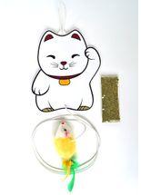 Brinquedo-Pet-Games-Lucky-Cat-para-Gatos