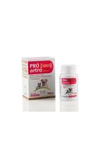 Suplemento-Vitaminico-e-Mineral-Vansil-Pro-Artro-1000-para-Caes-e-Gatos