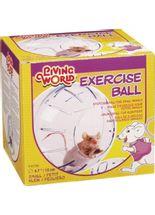 Globo-de-Exercicio-Hamster-P-_-Chalesco