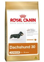 Racao-Royal-Canin-Dachshund-30-Junior---1Kg