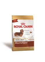 Racao-Royal-Canin-Dachshund-para-Caes-Adultos