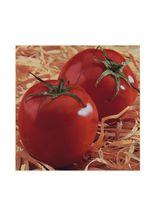 semente-feltrin-box-tomate-santa-cruz-kada-gigante