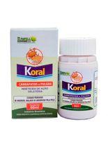 Inseticida-Rawell-Quimica-Koral-para-Ambientes
