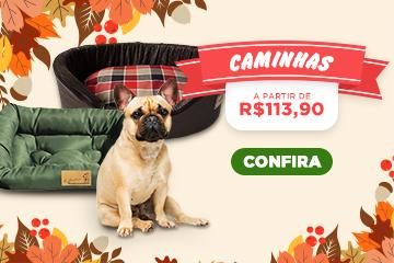 Banner Mob-Caminhas-outono