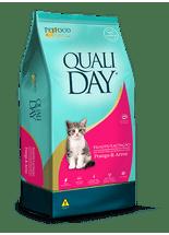 qualiday-filhote-gato