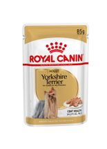 racao-umida-royal-canin-yorkshire-terrier-para-caes-adultos